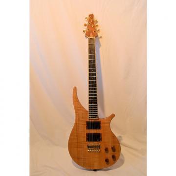 Custom Guitare Active 2016