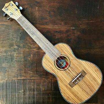 Custom Amahi Classic Zebrawood Concert Ukulele w/ 10mm Padded Bag and Leather Pick