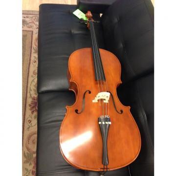 Custom Cello  Unknown