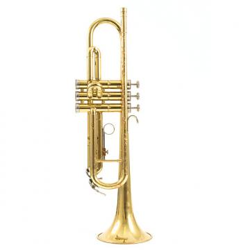 Custom Holton T602 Bb Trumpet w/ Case