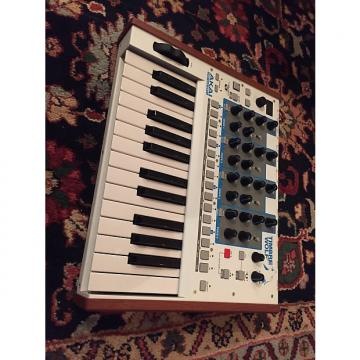 Custom Akai Timbre Wolf Analog 4-Voice Polyphonic Synthesizer
