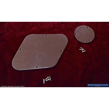 Custom 1969 Gibson Les Paul Deluxe Goldtop Backplate Control Cavity Cover Plate Set Brown 1968 1970 1971