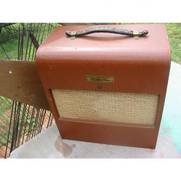 Custom 1950's Silvertone Amp 1430 Amp  Original -Clean Danelectro