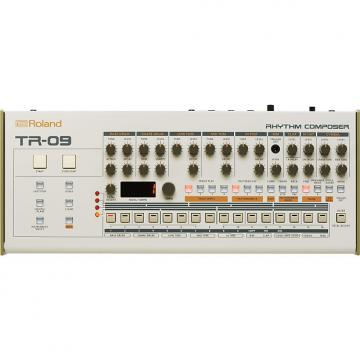 Custom Roland Boutique TR-09 drum machine (Factory Refurb/Full Warranty)