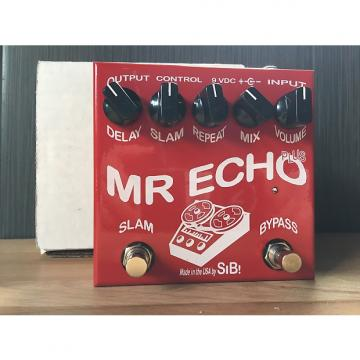 Custom Sib Mr Echo