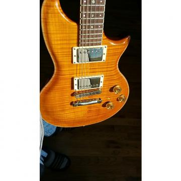 Custom Washburn E-300 USA custom shop