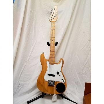 Custom Viper Jr Electric Guitar by BGuitars Model GE36