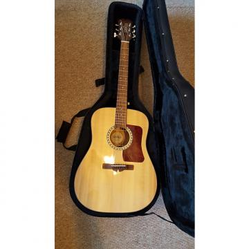 Custom Sierra SDS33 Acoustic Dreadnought + Case