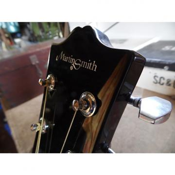 Custom Electro/acoustic guitar by Martin Smith: soft chord student set up