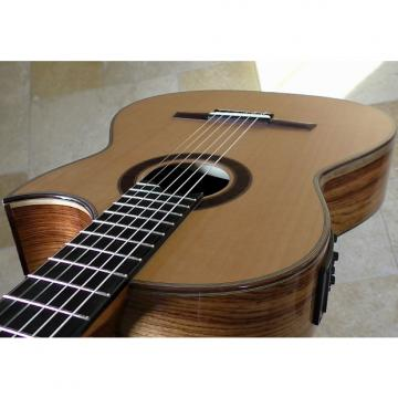 Custom Hanika Cut Pro cedar top electric crossover guitar