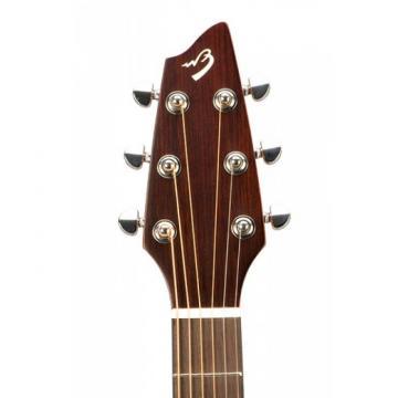 Breedlove martin guitar strings acoustic medium Model martin guitar strings Passport acoustic guitar martin C250/COE dreadnought acoustic guitar Acoustic guitar strings martin Electric Guitar WITH Gigbag