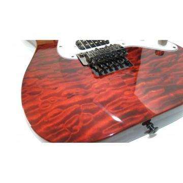 Custom Shop Schecter Flame Maple Top Red Wine Electric Guitar