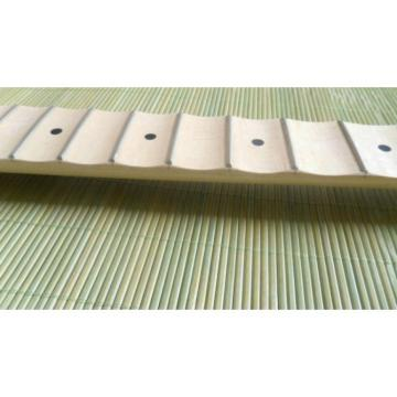 Fender Stratocaster Unfinished Scalloped Fretboard
