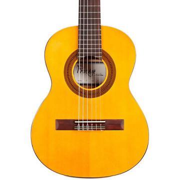 Cordoba dreadnought acoustic guitar Protege martin guitar strings acoustic C1 martin 1/4 martin guitars acoustic Size martin strings acoustic Classical Guitar Natural