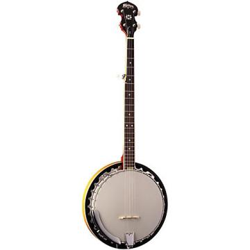 Washburn B9 Banjo Sunburst