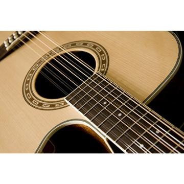 Washburn WD10 SeriesWD10SCE12 12-String Acoustic Guitar