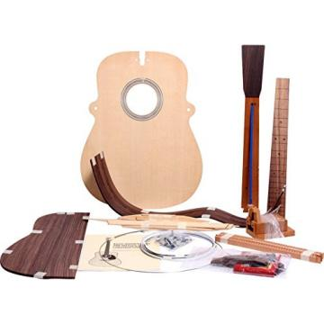Martin Build Your Own Guitar Kit D41
