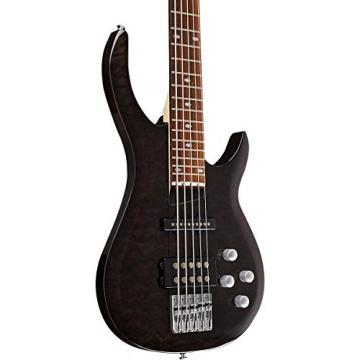 Rogue LX405 Series III Pro 5-String Electric Bass Guitar Transparent Black