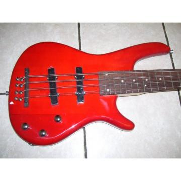 Octave Bass Guitar, 8 String (4 pair of 8 string)