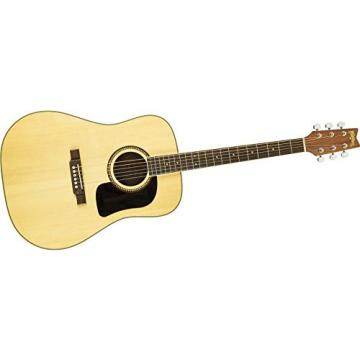 Washburn D10 Series Acoustic Guitar (Natural)