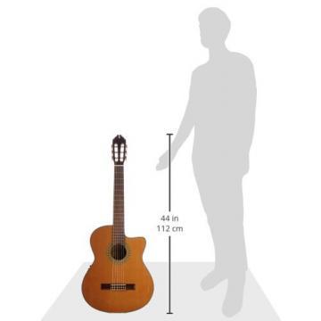 Washburn Classical Series Acoustic Electric Cutaway Guitar