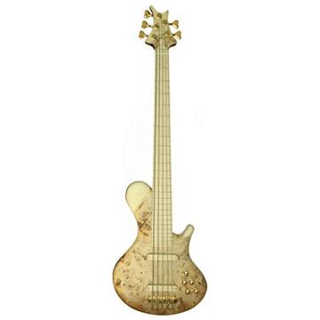 TORUN POSH 0010 Intelligently Engineered Bass Guitar