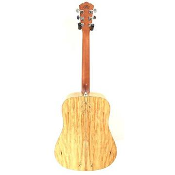 Washburn WCSD40SK Woodcraft Series Acoustic Guitar w/Gig Bag, Strings plus More
