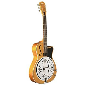 Washburn USM-R60RCE Resonator Guitar, Trans Honey