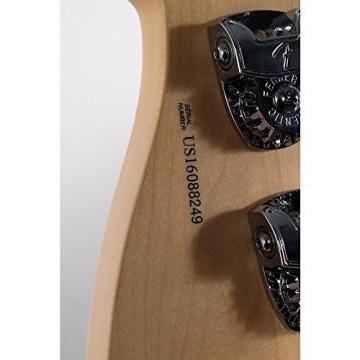Fender American Professional Jazz Bass Rosewood Fingerboard Level 2 Black 190839093707