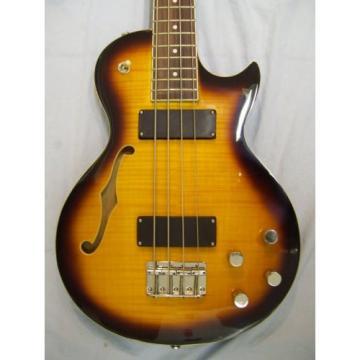 Semi hollow body Bass guitar, 4 string, LP