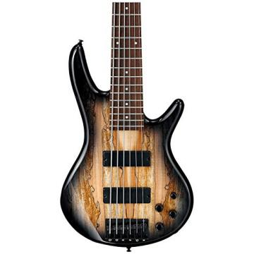 Ibanez GSR206SM 6-String Electric Bass (Natural Grey Burst) w/ Spalted Maple Top w/ Gig Bag and Stand
