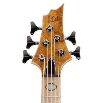 ESP RB-1005BMHN Burled Maple 5 String Bass
