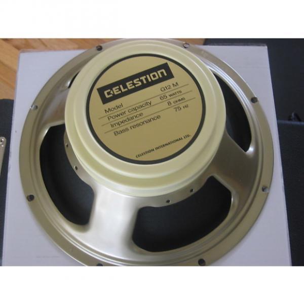 Custom Celestion G 12M-65