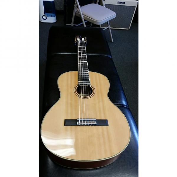 Custom Alvarez RC 26 w/ bag