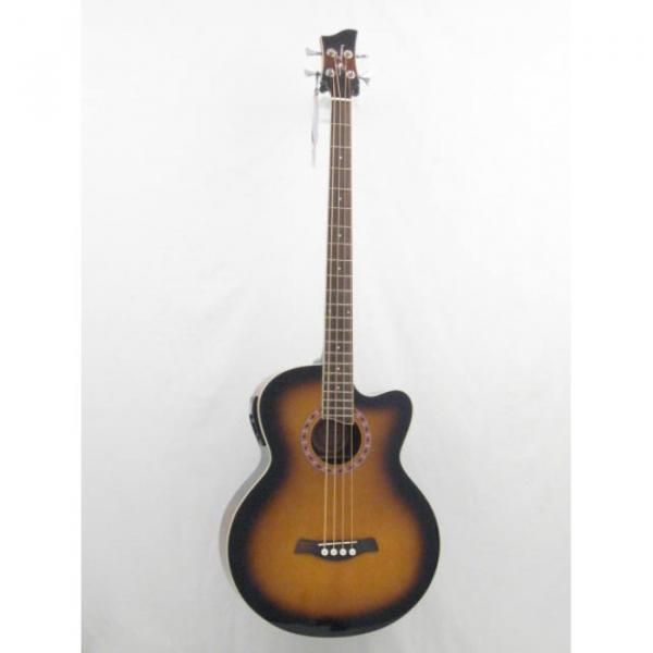 Jay Turser Model JTAB-650ATB Acoustic Bass Guitar