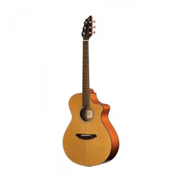 Breedlove Model Passport Acoustic Electric Guitar With Gigbag