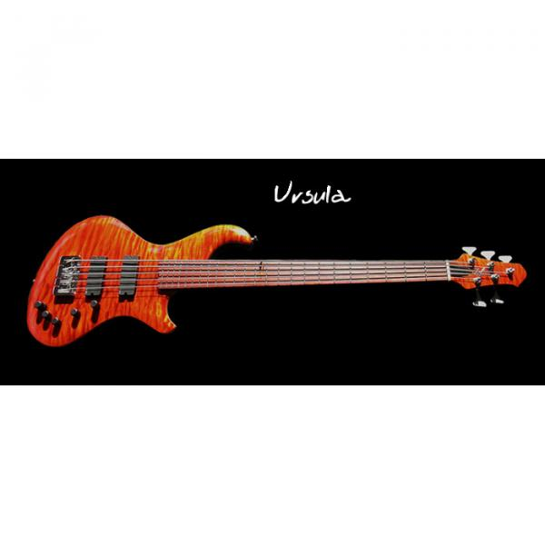Custom Built Urs Flame Maple Top Bass