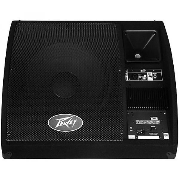 Peavey PV 15PM Powered Floor Monitor