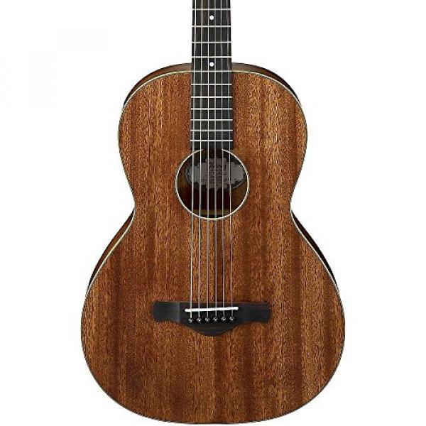 Ibanez AVN5OPN Artwood Vintage Parlor Guitar - Open Pore Natural