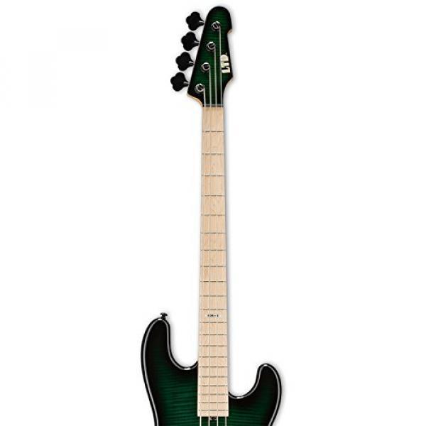 ESP LMM4FMDSTGSB-KIT-1 Marco Mendoza Signature Series 4-String Electric Bass, Dark See Thru Green Sunburst