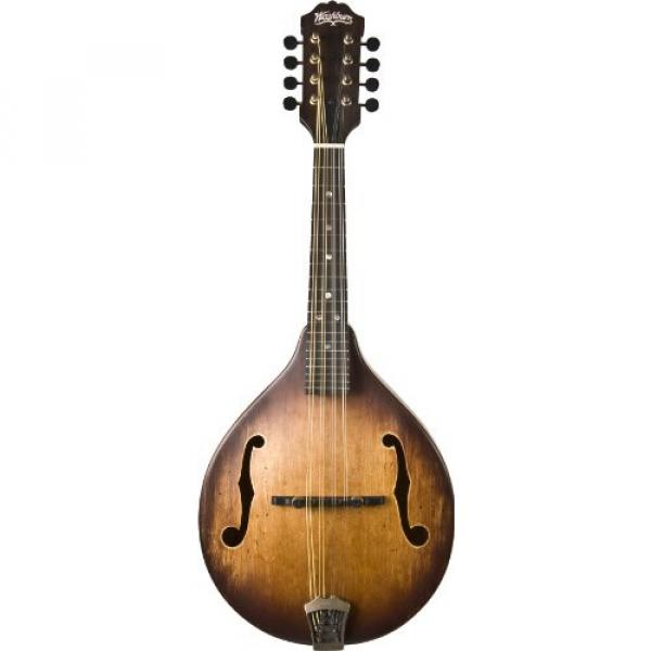 Washburn M106SWK Mandolin, Natural