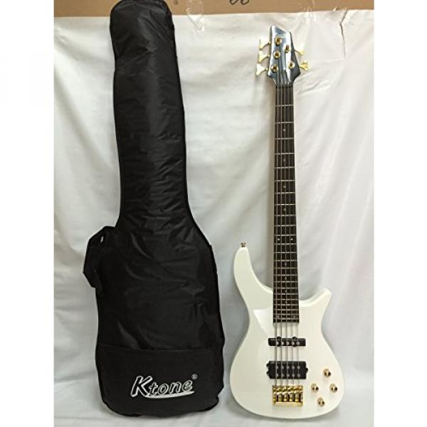 5 String Bass Guitar, Electric Bass, Free Gig Bag