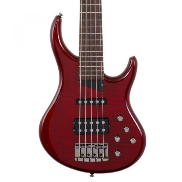 "MTD Kingston ""The Heir"" Bass Guitar (5 String, Rosewood, Transparent Cherry)"
