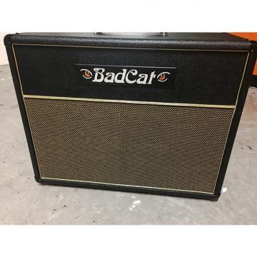 Custom Bad Cat Black Cat 30R Head and Cab 2012 Black & Gold