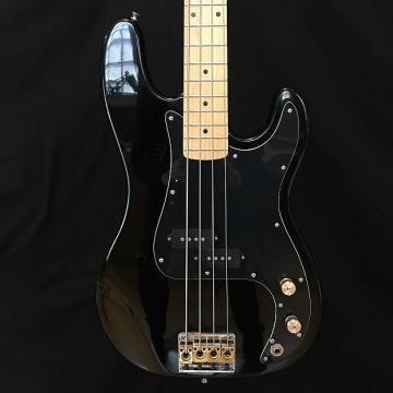 Custom Epiphone 4 String Bass