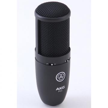 Custom AKG P120 Condenser Cardioid Microphone MC-1891