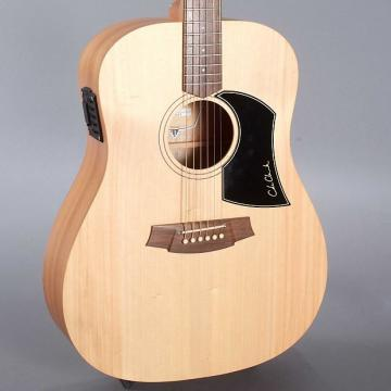 Custom Cole Clark FL1E Fat Lady (2014)