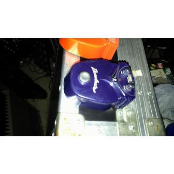 Custom Danelectro Corned beef Reverb Pedal