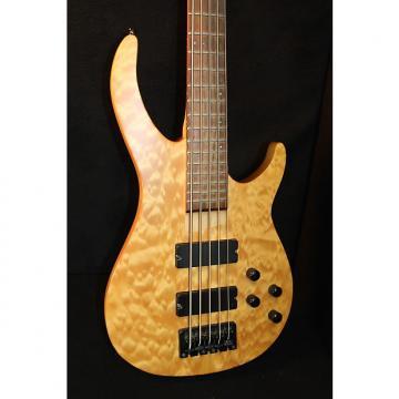 Custom Rogue LX 405 5-String Bass