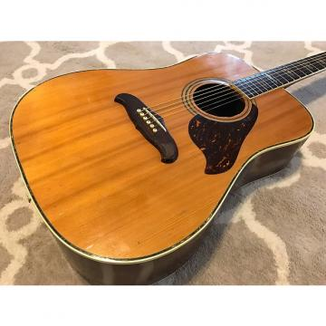 Custom Ventura V-35 1970's Natural w/ Hardshell Case
